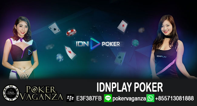 idnplay-poker